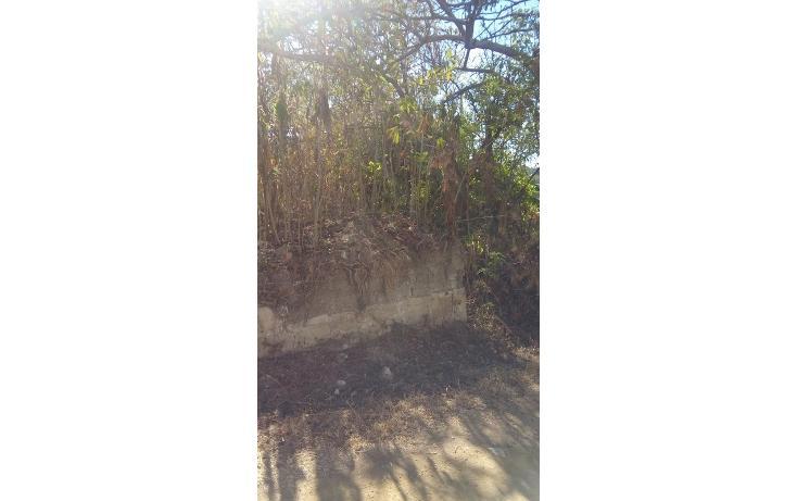 Foto de terreno habitacional en venta en  , santo domingo barrio alto, villa de etla, oaxaca, 1640457 No. 03