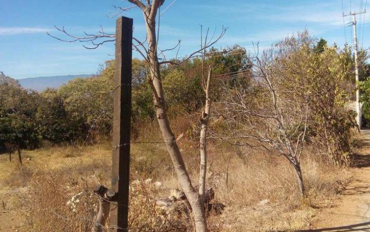 Foto de terreno habitacional en venta en, santo domingo barrio alto, villa de etla, oaxaca, 1640457 no 05
