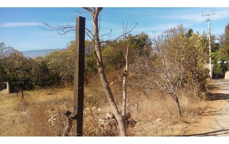 Foto de terreno habitacional en venta en  , santo domingo barrio alto, villa de etla, oaxaca, 1640457 No. 05