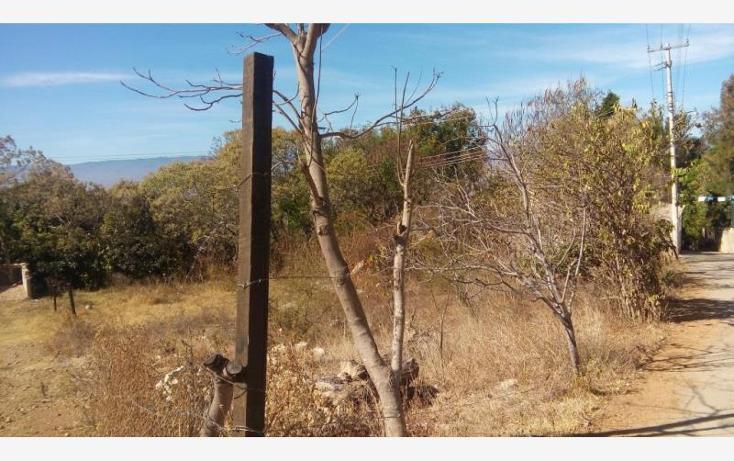 Foto de terreno habitacional en venta en  , santo domingo barrio alto, villa de etla, oaxaca, 1666634 No. 06