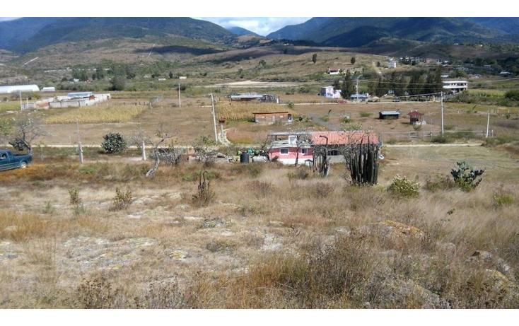 Foto de terreno habitacional en venta en  , santo domingo barrio alto, villa de etla, oaxaca, 896947 No. 03