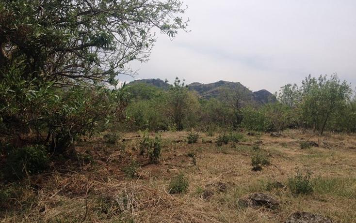 Foto de terreno habitacional en venta en  , santo domingo, tepoztlán, morelos, 1598242 No. 05