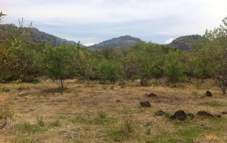 Foto de terreno habitacional en venta en  , santo domingo, tepoztlán, morelos, 1598242 No. 07