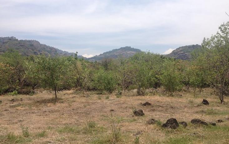 Foto de terreno habitacional en venta en  , santo domingo, tepoztlán, morelos, 1598242 No. 08