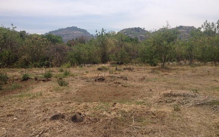 Foto de terreno habitacional en venta en  , santo domingo, tepoztlán, morelos, 1598242 No. 12