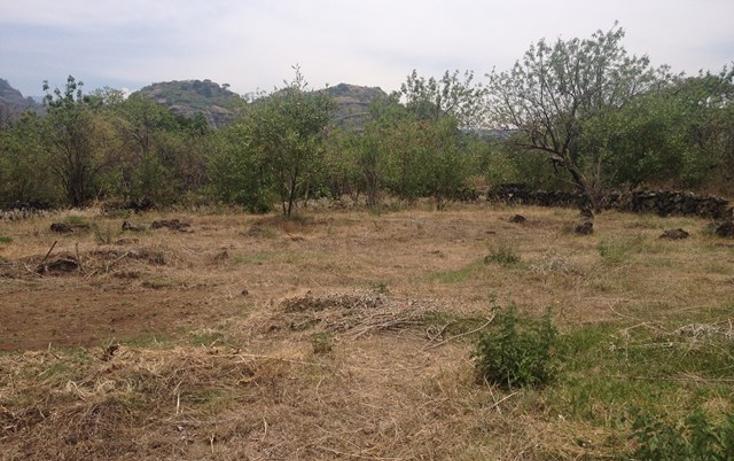 Foto de terreno habitacional en venta en  , santo domingo, tepoztlán, morelos, 1598242 No. 13