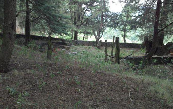 Foto de terreno habitacional en venta en, santo tomas ajusco, tlalpan, df, 1071733 no 04