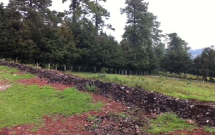 Foto de terreno habitacional en venta en  , santo tomas ajusco, tlalpan, distrito federal, 1065347 No. 02