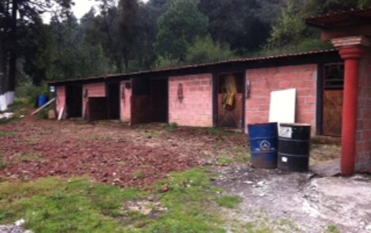 Foto de terreno habitacional en venta en  , santo tomas ajusco, tlalpan, distrito federal, 1065347 No. 04