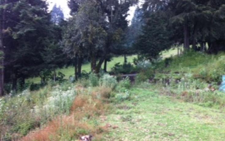 Foto de terreno habitacional en venta en  , santo tomas ajusco, tlalpan, distrito federal, 1065347 No. 07
