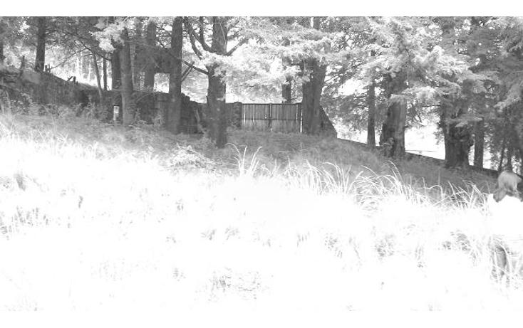 Foto de terreno habitacional en venta en  , santo tomas ajusco, tlalpan, distrito federal, 1071733 No. 02