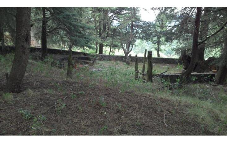 Foto de terreno habitacional en venta en  , santo tomas ajusco, tlalpan, distrito federal, 1071733 No. 04