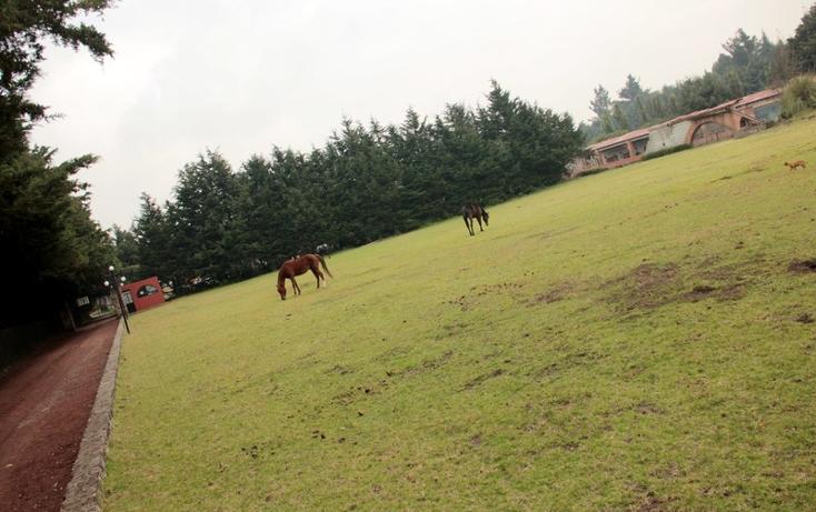 Foto de rancho en venta en  , santo tomas ajusco, tlalpan, distrito federal, 1408089 No. 15