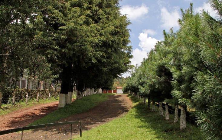 Foto de terreno habitacional en venta en  , santo tomas ajusco, tlalpan, distrito federal, 1986869 No. 03