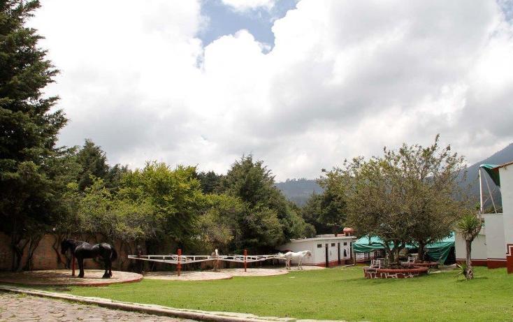 Foto de terreno habitacional en venta en  , santo tomas ajusco, tlalpan, distrito federal, 1986869 No. 08