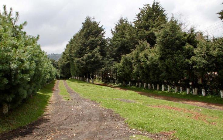 Foto de rancho en venta en  , santo tomas ajusco, tlalpan, distrito federal, 2000177 No. 10