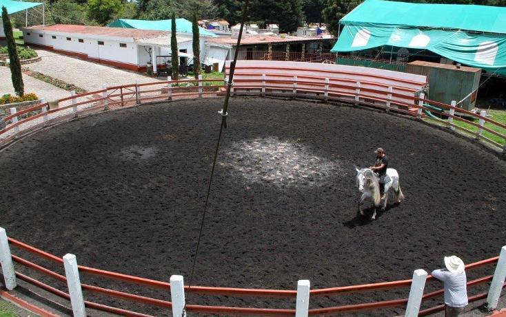 Foto de rancho en venta en  , santo tomas ajusco, tlalpan, distrito federal, 2000177 No. 29