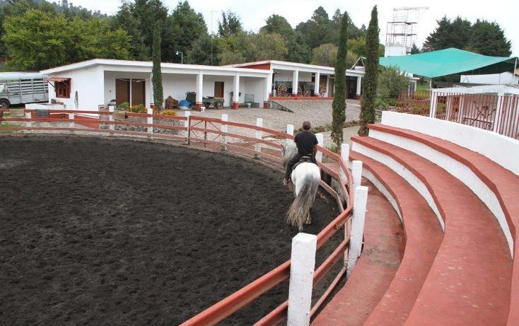 Foto de rancho en venta en  , santo tomas ajusco, tlalpan, distrito federal, 2000177 No. 33