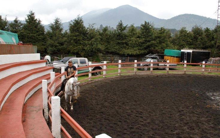 Foto de rancho en venta en  , santo tomas ajusco, tlalpan, distrito federal, 2000177 No. 34