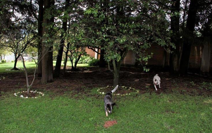 Foto de rancho en venta en  , santo tomas ajusco, tlalpan, distrito federal, 2000177 No. 43