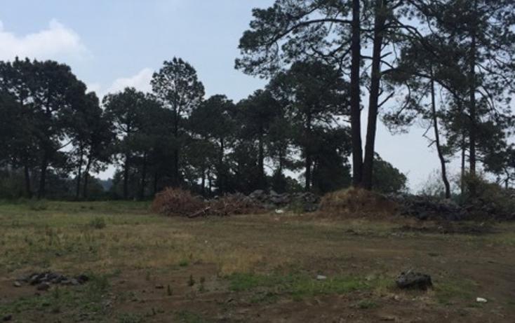 Foto de terreno habitacional en venta en tlapexco , santo tomas ajusco, tlalpan, distrito federal, 2732852 No. 01