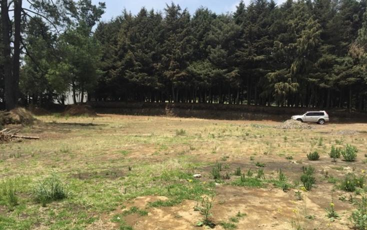 Foto de terreno habitacional en venta en tlapexco , santo tomas ajusco, tlalpan, distrito federal, 2732852 No. 04