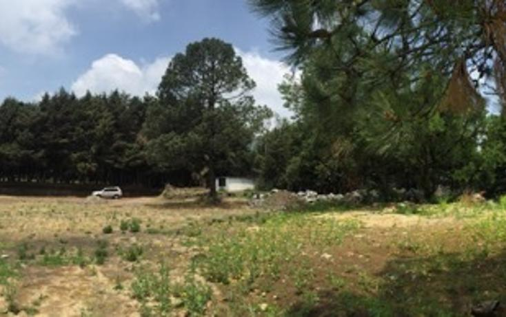 Foto de terreno habitacional en venta en tlapexco , santo tomas ajusco, tlalpan, distrito federal, 2732852 No. 05