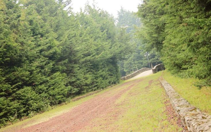 Foto de rancho en venta en  , santo tomas ajusco, tlalpan, distrito federal, 2732967 No. 13