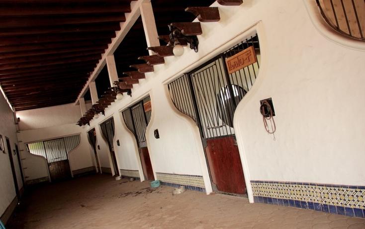 Foto de rancho en venta en  , santo tomas ajusco, tlalpan, distrito federal, 2732967 No. 17