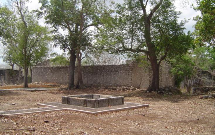 Foto de rancho en venta en  , sasula, mérida, yucatán, 1071995 No. 06