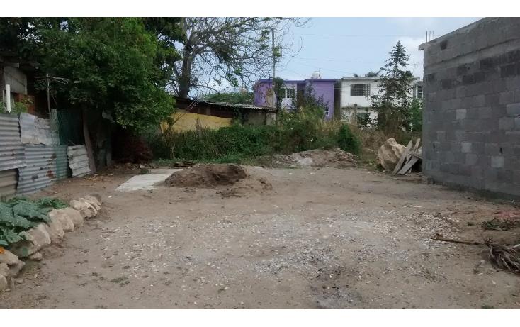 Foto de terreno habitacional en renta en  , sat?lite chapala, altamira, tamaulipas, 1772478 No. 02