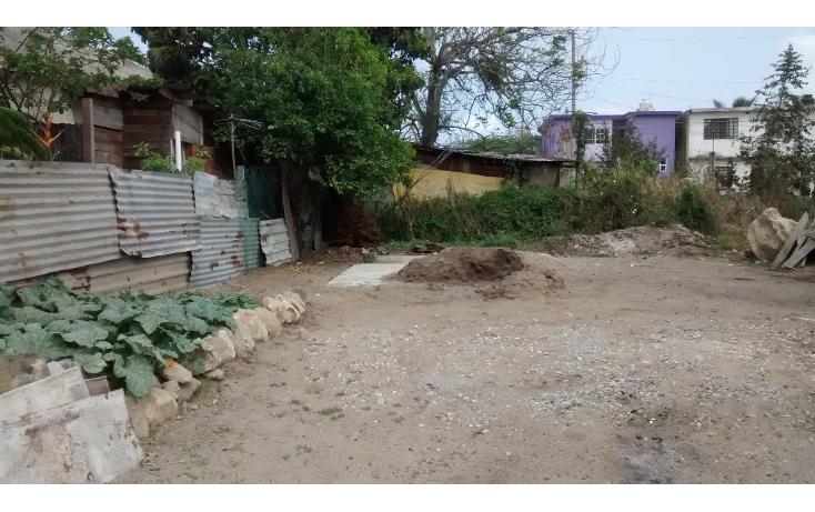 Foto de terreno habitacional en renta en  , sat?lite chapala, altamira, tamaulipas, 1772478 No. 03