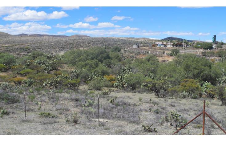 Foto de terreno comercial en venta en  , sauceda de la borda, vetagrande, zacatecas, 1150225 No. 03