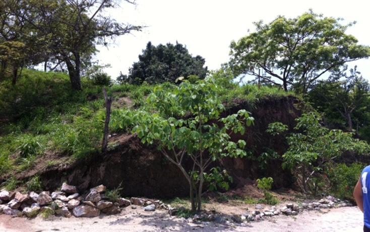 Foto de terreno habitacional en venta en  , sayulita, bahía de banderas, nayarit, 1192791 No. 02