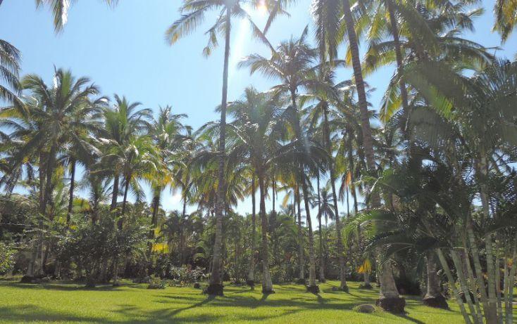 Foto de terreno habitacional en venta en, sayulita, bahía de banderas, nayarit, 1403335 no 08