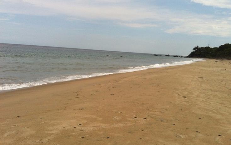 Foto de casa en venta en  , sayulita, bahía de banderas, nayarit, 1670284 No. 26