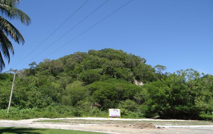 Foto de terreno habitacional en venta en  , sector e, santa mar?a huatulco, oaxaca, 1772158 No. 02