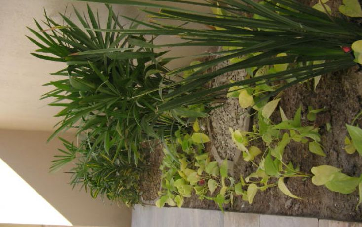 Foto de casa en condominio en venta en, sector la selva fidepaz, la paz, baja california sur, 1059739 no 60