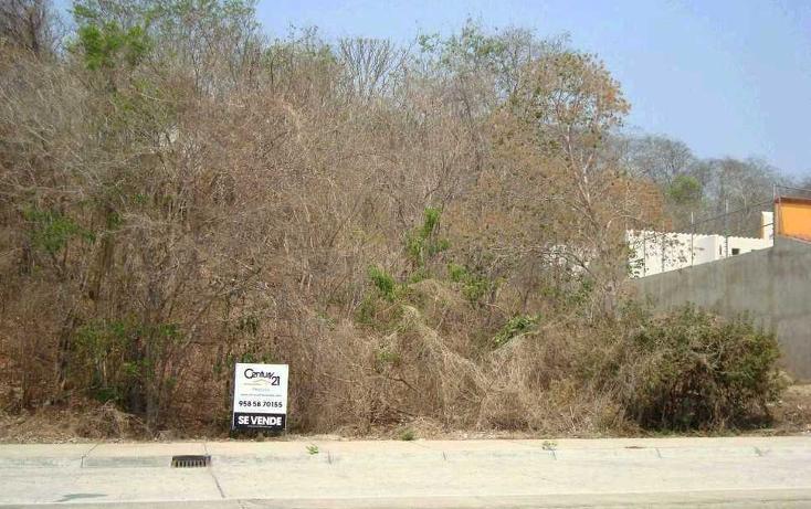 Foto de terreno habitacional en venta en  , sector o, santa maría huatulco, oaxaca, 1054723 No. 02
