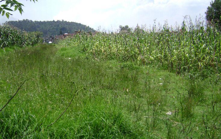 Foto de terreno habitacional en venta en, sector sacromonte, amecameca, estado de méxico, 1080345 no 03