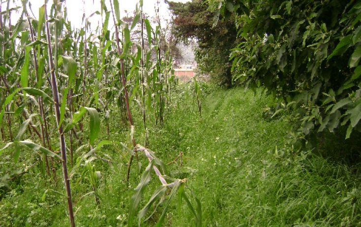 Foto de terreno habitacional en venta en, sector sacromonte, amecameca, estado de méxico, 1080345 no 06