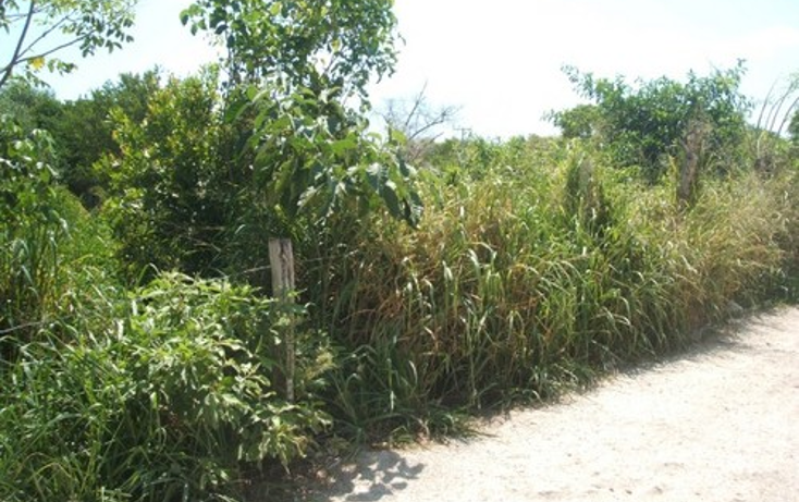 Foto de terreno habitacional en venta en  , selvamar, solidaridad, quintana roo, 1064589 No. 03
