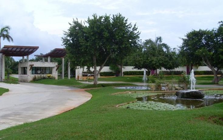 Foto de terreno habitacional en venta en  , selvamar, solidaridad, quintana roo, 1065671 No. 05