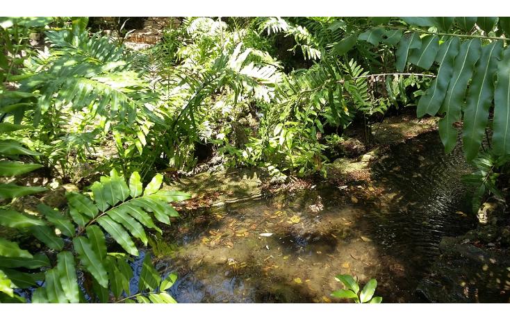 Foto de departamento en venta en  , selvamar, solidaridad, quintana roo, 1171637 No. 19