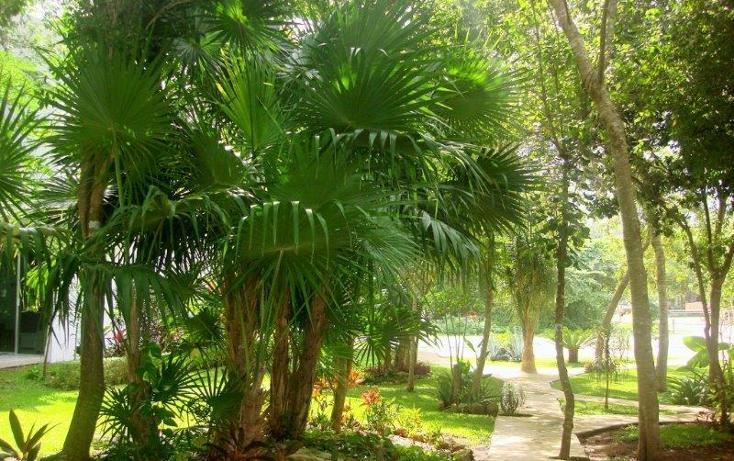 Foto de casa en venta en  , selvamar, solidaridad, quintana roo, 1604154 No. 21