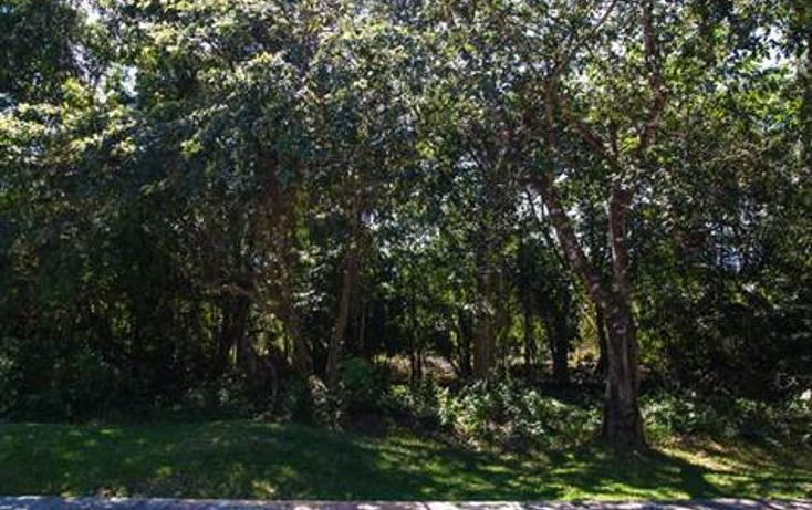 Foto de terreno habitacional en venta en  , selvamar, solidaridad, quintana roo, 723971 No. 05
