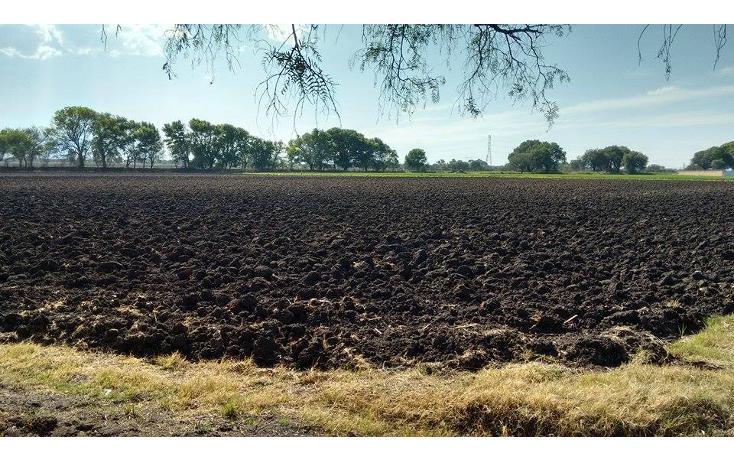 Foto de terreno comercial en venta en  , senegal de palomas, san juan del r?o, quer?taro, 1189035 No. 08
