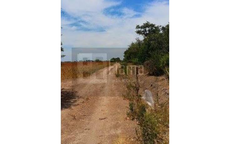 Foto de rancho en renta en  , sentispac, santiago ixcuintla, nayarit, 1301953 No. 04