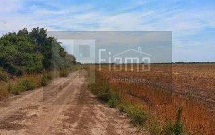 Foto de rancho en renta en  , sentispac, santiago ixcuintla, nayarit, 1301953 No. 07