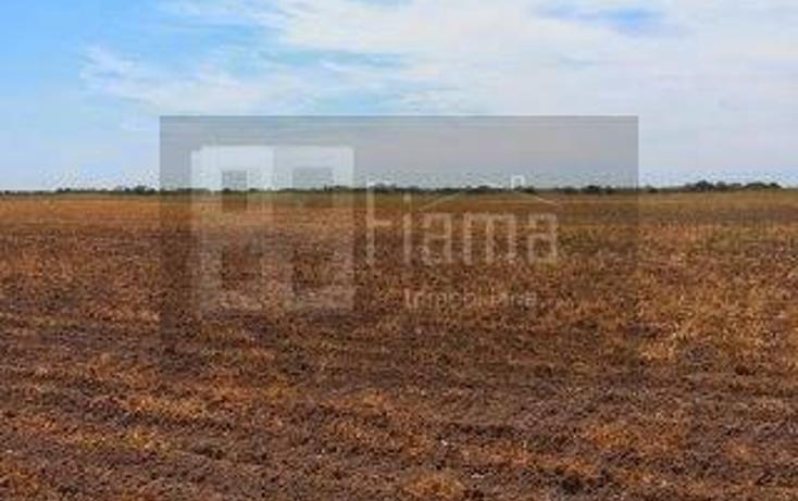 Foto de rancho en renta en  , sentispac, santiago ixcuintla, nayarit, 1301953 No. 08